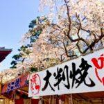 2018桜祭り開幕!東京のおすすめ屋台をバシッと紹介!