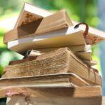 簡単に誰でも書ける!読書感想文おすすめの本3選をご紹介!