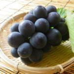 葡萄を漢字で書く為にやるべき事!簡単に覚える方法を伝授!